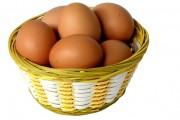 Белки и продукты из яйца